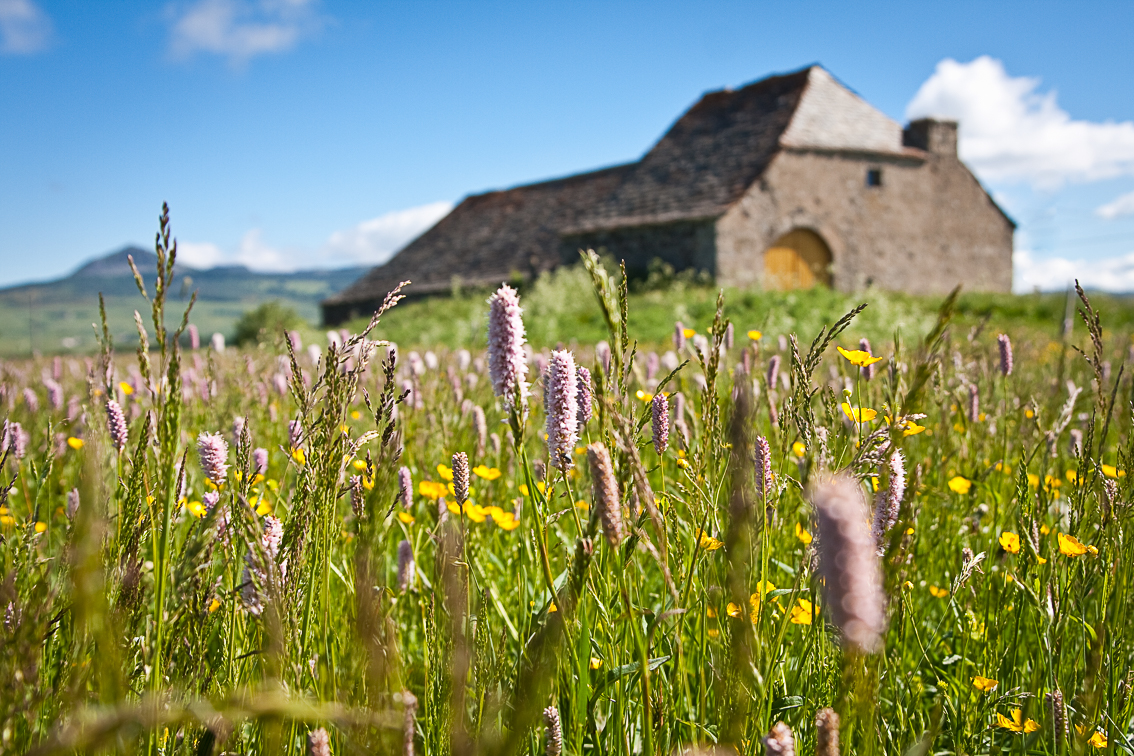 CG07-Parc naturel des Monts d'Ardèche
